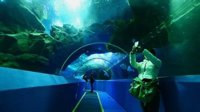 游览约2小时),青岛海底世界是山东省第一家海底世界,由梦幻水母宫
