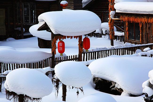 【约惠东北】  冰城哈尔滨、童话雪乡、激情亚布力双飞品质无购物6日游