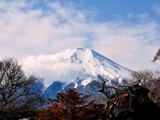 赣州起止  日本大阪富士山东京7日游