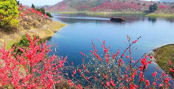 花源谷游湖赏花、武陵奇峡、赏油菜花特惠一日游